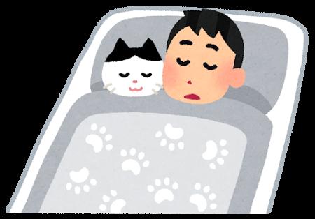 一人暮らしの猫飼い