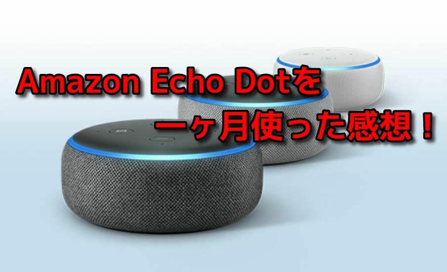 Amazon Echo Dotを一ヶ月使った感想!